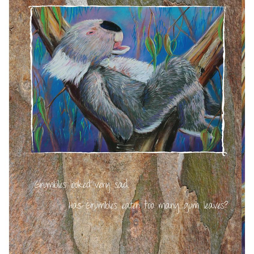 Koala Tails 07