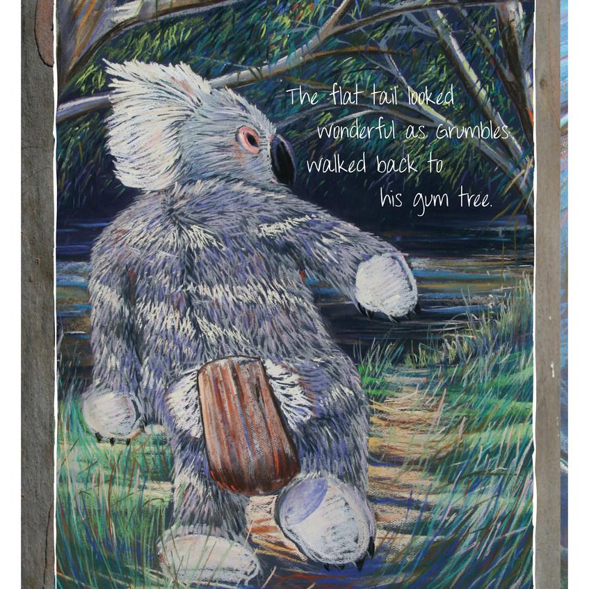 Koala Tails 17
