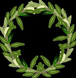 olivetreecircle.png