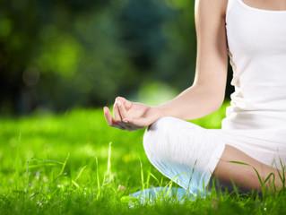 Stilling the mind - A beginner's guide to meditation