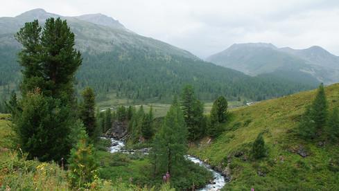 Приток реки