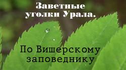 Артем и Влада Палкины (г.Лысьва)