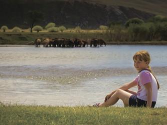 Большое путешествие! Монголия. Из серии Путешествие.