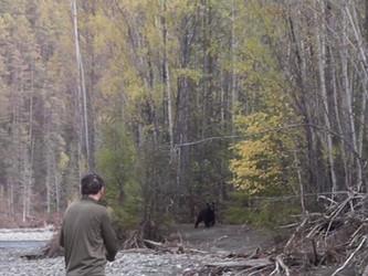 Встреча с медведем. Из серии Путешествие.