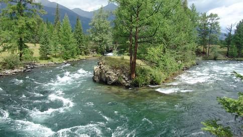 Эта река - просто восторг!