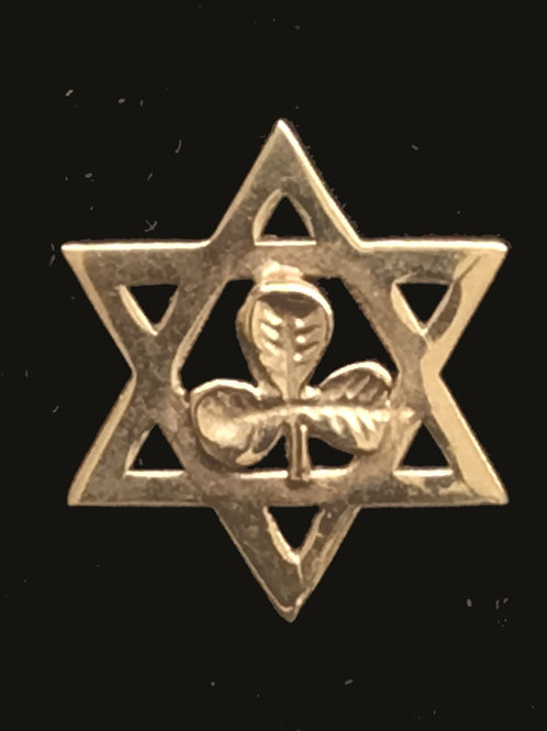 10K Gold Star of David and Shamrock Tie Pin
