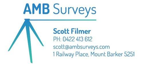 AMB Surveys.jpg