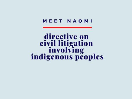 Directive on Civil Litigation Involving Indigenous Peoples