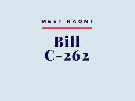 Bill C-262