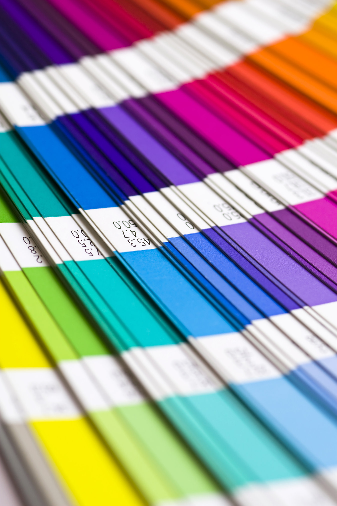 Shirt design melbourne -  Screen Printing Pantone Fan