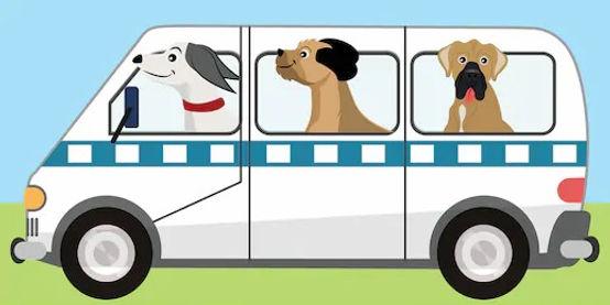 dog-bus-illustration-van-boxer-260nw-171