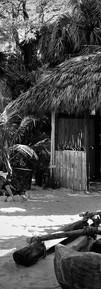 dreams of tahiti
