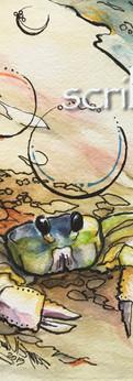 "crab   watercolor/ink on cold press paper  prints: original 7.5x10"":"