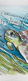 "sea turtle II  watercolor/ink on cold press paper  prints: original 5x7"":"