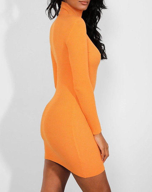 Orange Turtle Neck Dress