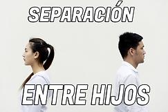 SEPARACION ENTRE HIJOS.png