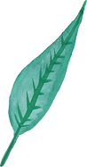 watercolor-leaf-3-1.png