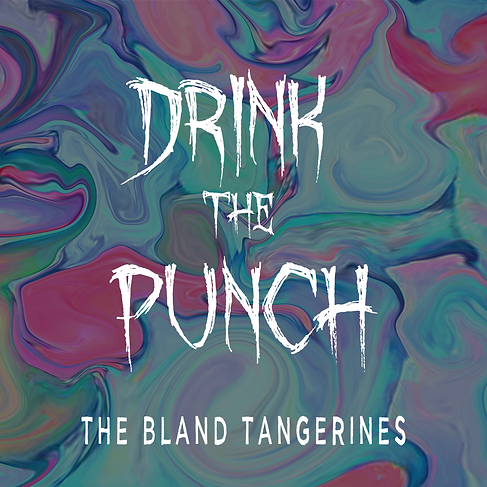 Drink The Punch Album Art.png