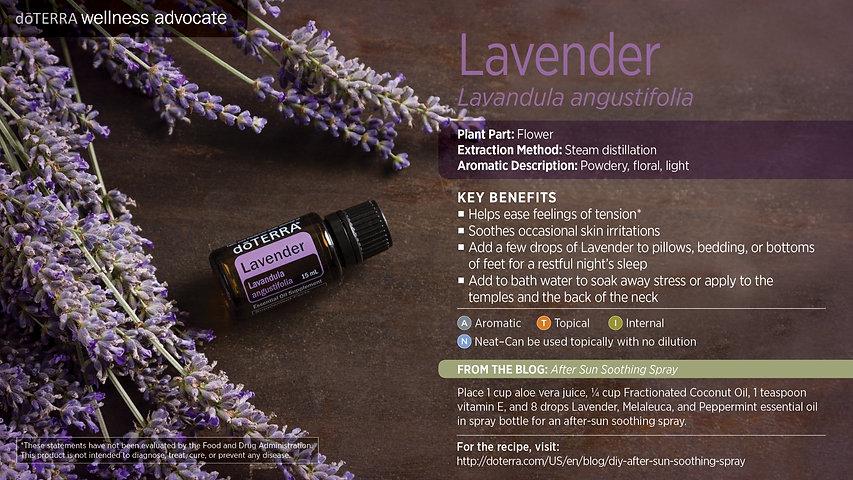 lavender-alternate.jpg