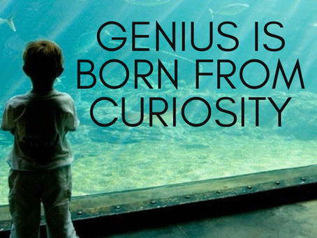 <blog> Maximizing Your Intellectual Curiosity