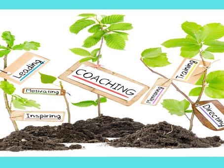 The Leadership Harvest; Planting Seeds For A Lifetime