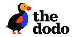 the dodo.jpeg