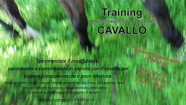 mindfulness col cavallo_giu-ago21.JPG