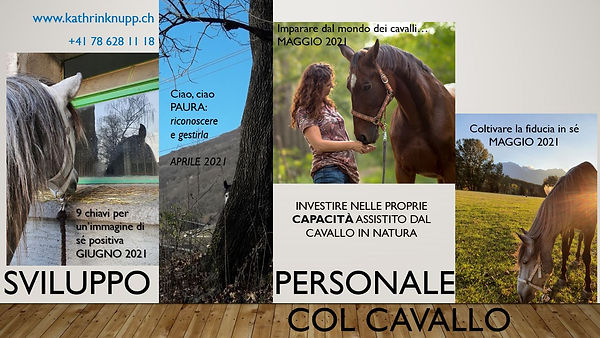 flyer seminari col cavallo 2021.JPG