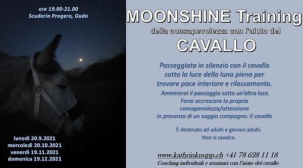 flyer_moonshine 2021.JPG