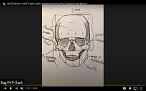 skull front view.png
