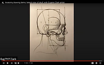 skull side view.png