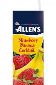 ALLENS STRAWBERRY BANANA COCKTAIL CASE