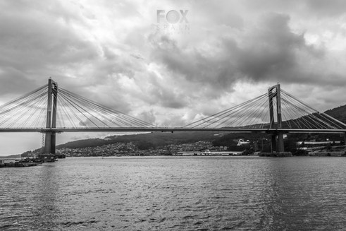 Fox Spain Fotografía