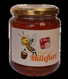 Miele millefiori naturale biologico