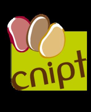 cnipt_edited.png