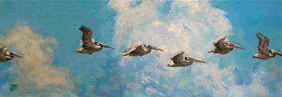 Pelican Procession