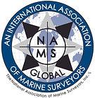 NAMS Global LogoALT.jpg
