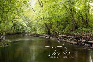 Cobus Creek