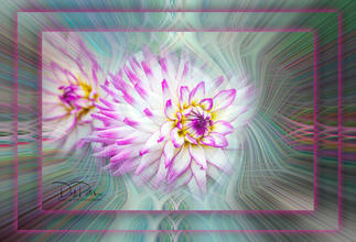 Fractual Flower