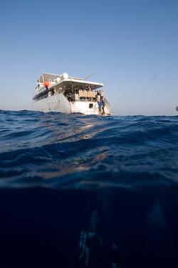 Red Sea O8-86