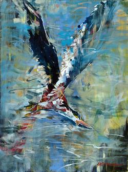 Black Skimmer Oil on Canvas 24 x 20 Sold
