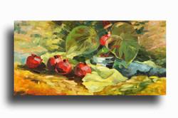 Pomegranates oil on canvas 18 x 36 Sold