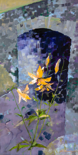 Wild Lily by Overpass Blue Ridge Parkway