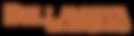 BELLAVISTA_FINAL__1.png
