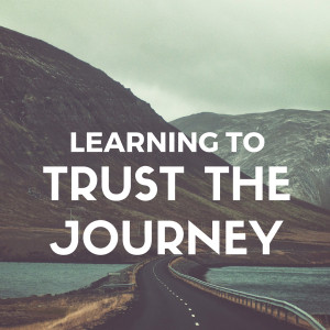 Trusting in your Journey