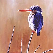 Malachite Kingfisher _edited_edited.jpg