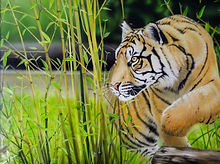 rsz_silent_hunter_by_jamie_sinclair_-_acrylic_-_framed_original_-_14x18_-_£540.jpg