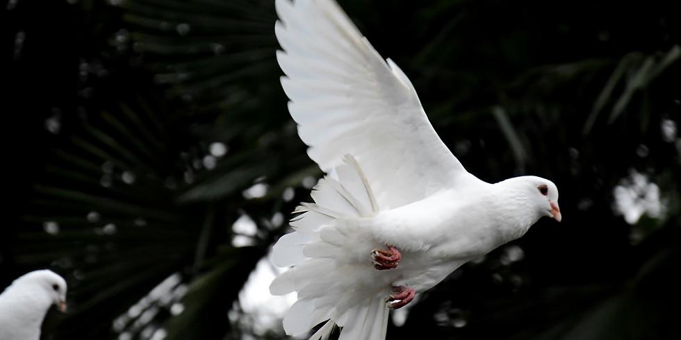 BIRTHING INTO PEACE: Advent Retreat