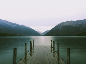 A New Zealander Reflects