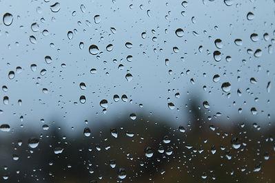 teardrops of vancouver.jpg
